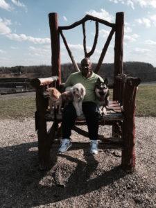Dog Training Danbury Bridgeport Fairfield County, CT