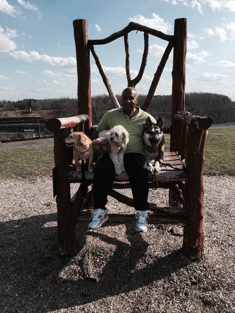 Dog Training for Fairfield County, CT. by Terry Haynie
