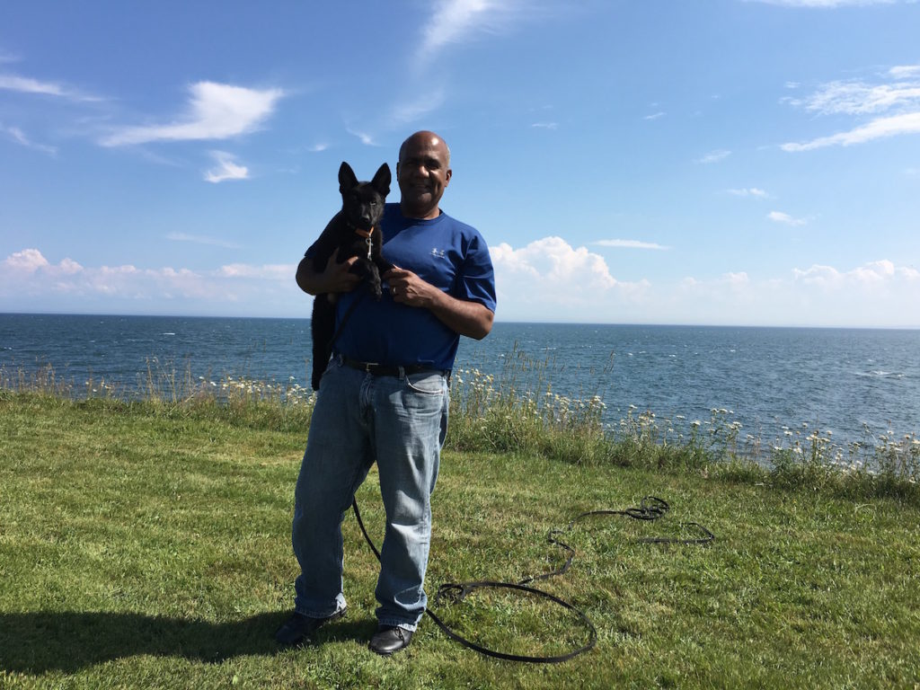Dog Training for Fairfield County in CT