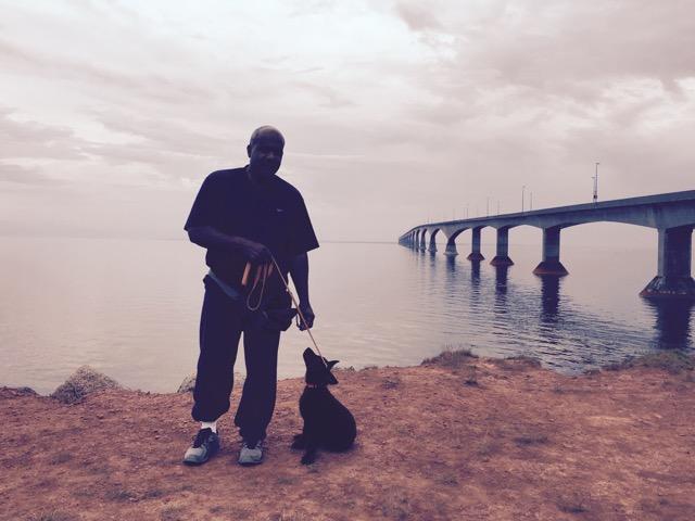 Dog Training Danbury Bridgeport , CT